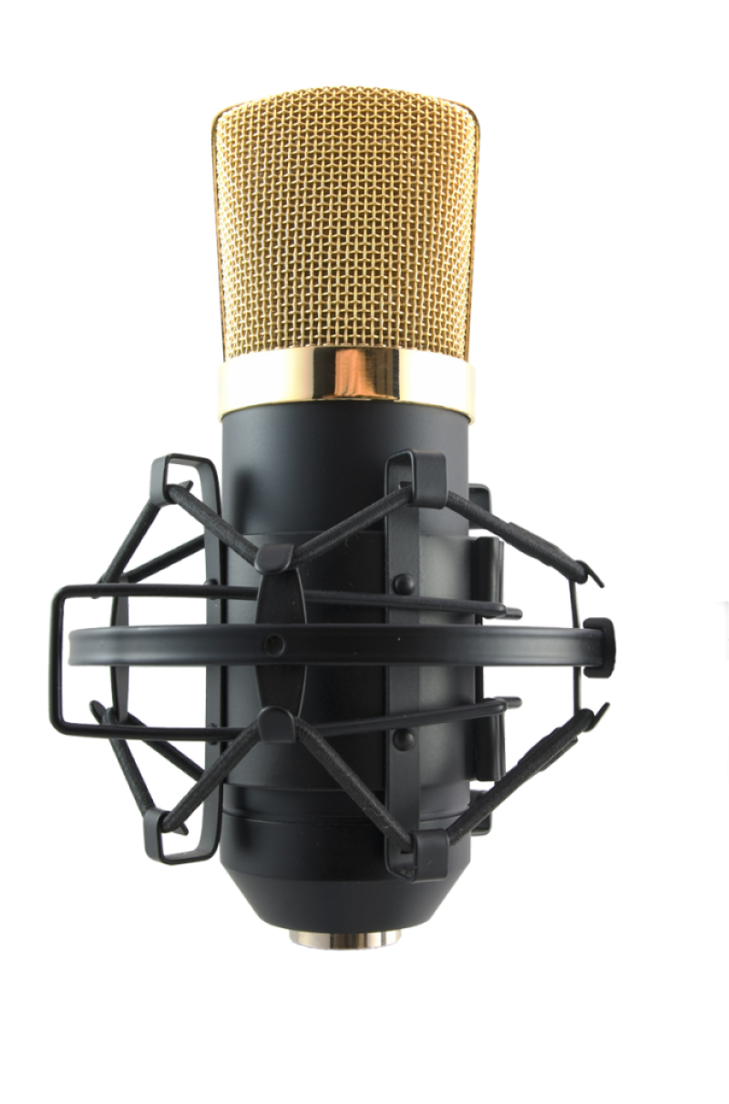 webisign-mic